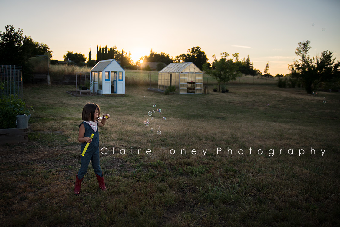 Little girl blowing bubbles on a backyard farm during sunset