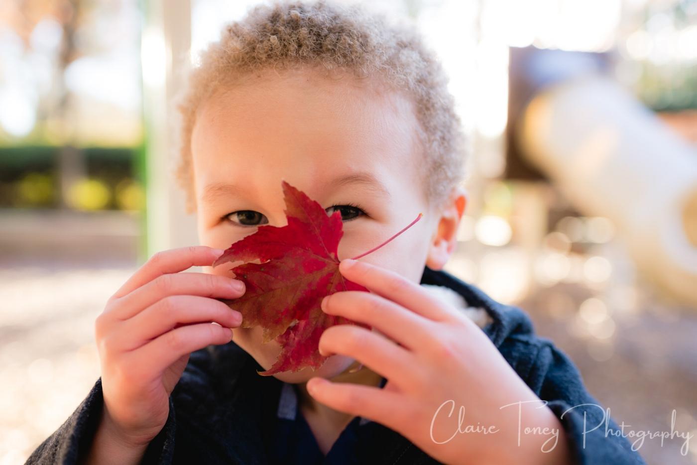 boy peeking over red leaf in playground