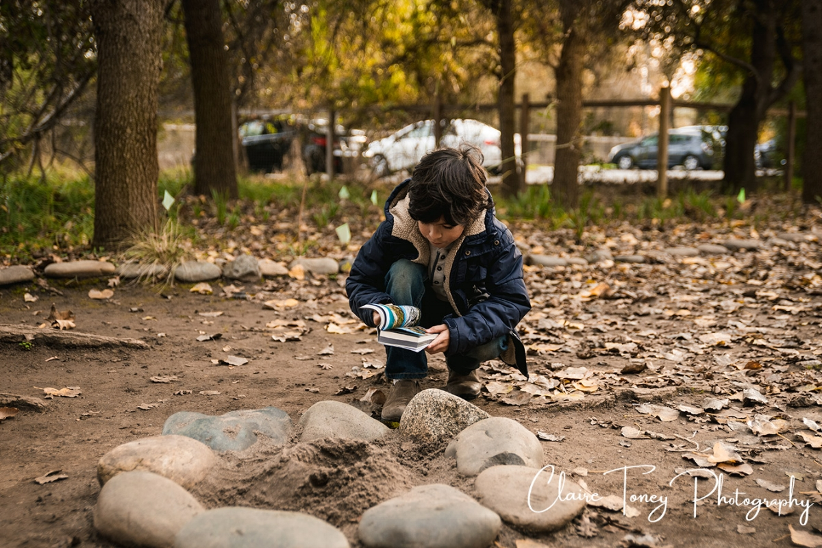 Young boy referring to his geology book at a park