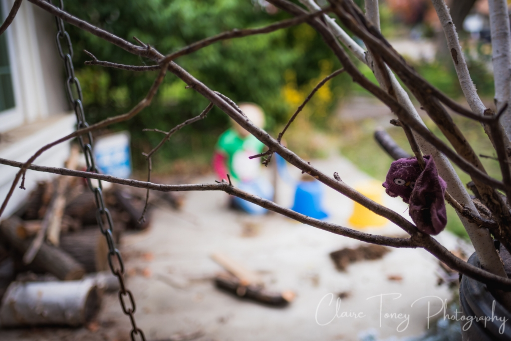 Little girl's sock in branches outside of home
