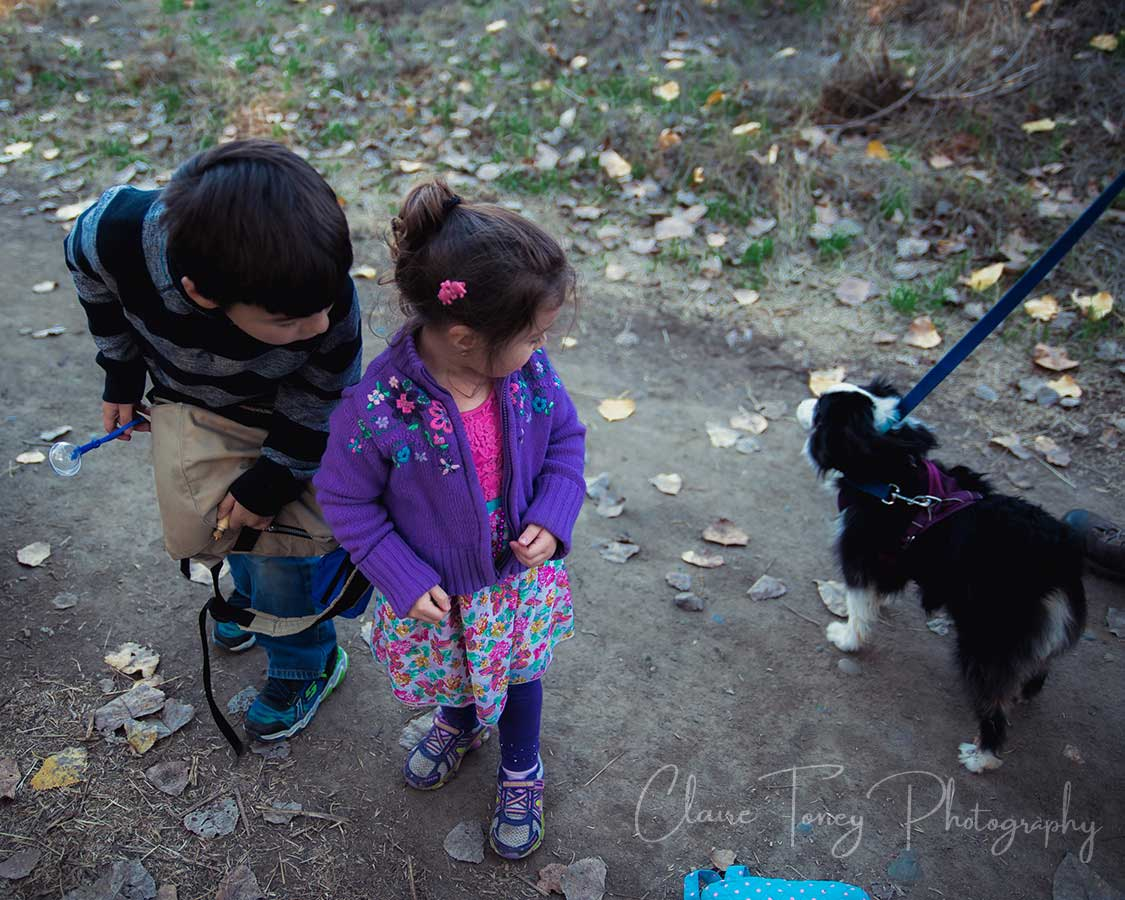 Boy and girl looking at little black and white dog on a leash on the American River Parkway