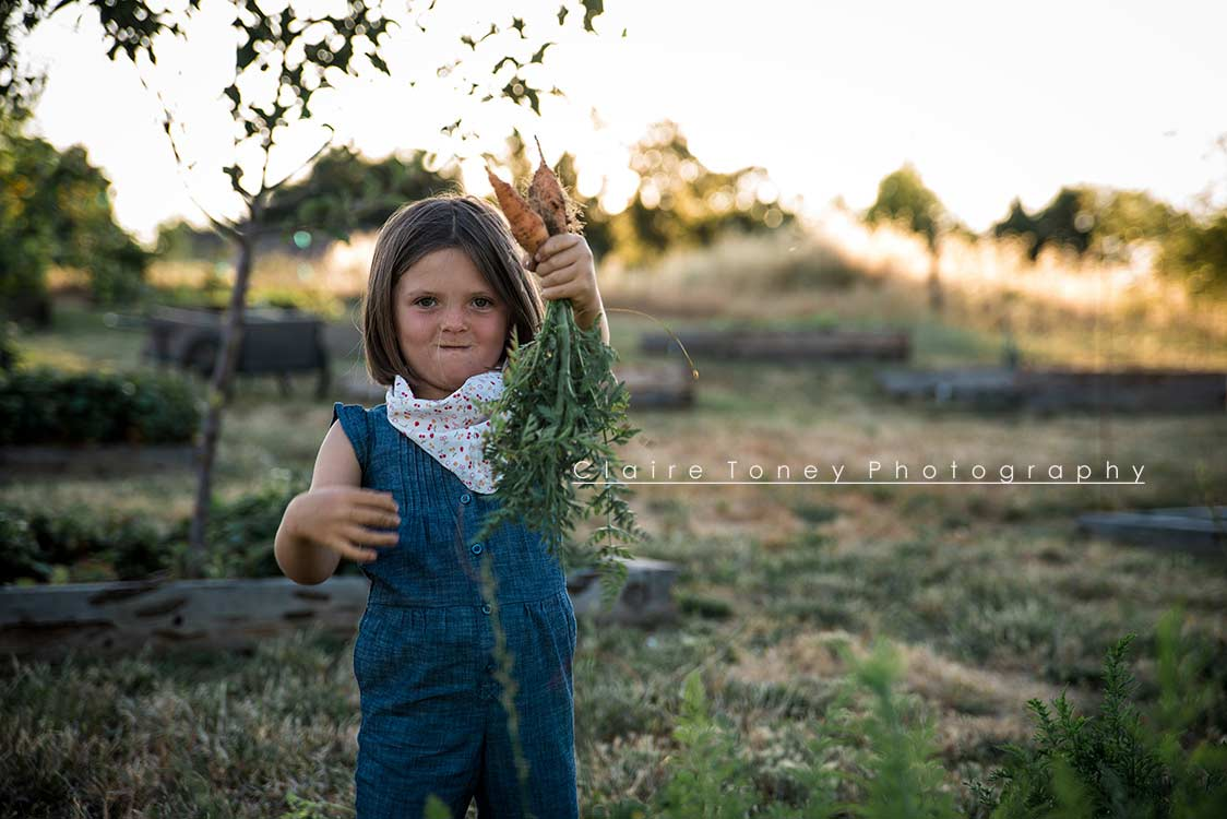 Little girl showing off carrots she just pulled out of the ground