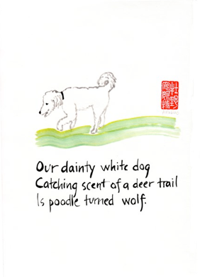 Our-dainty-white-dog.png