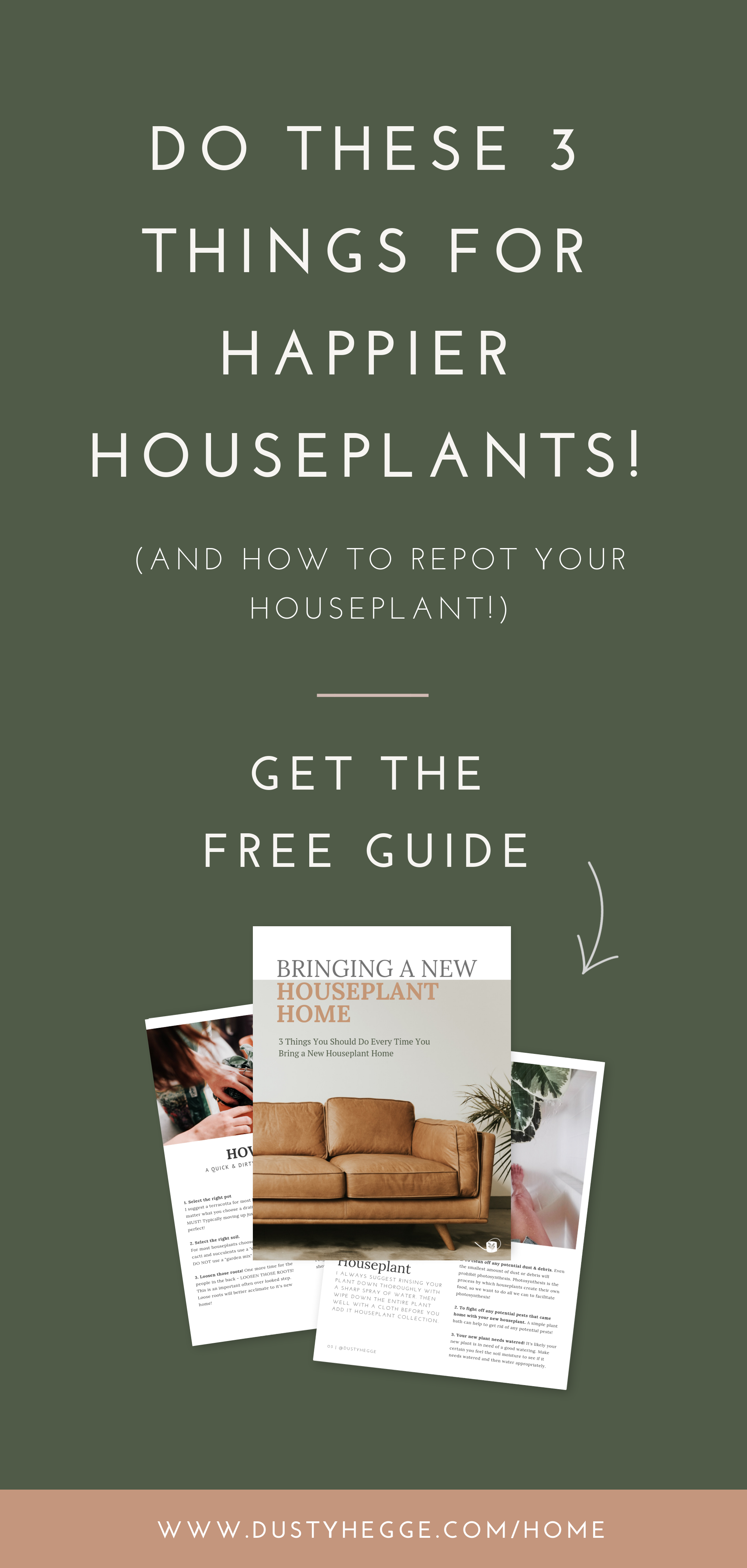 3 Things you NEED to do when you bring a new houseplant home #growwellpodcast.png