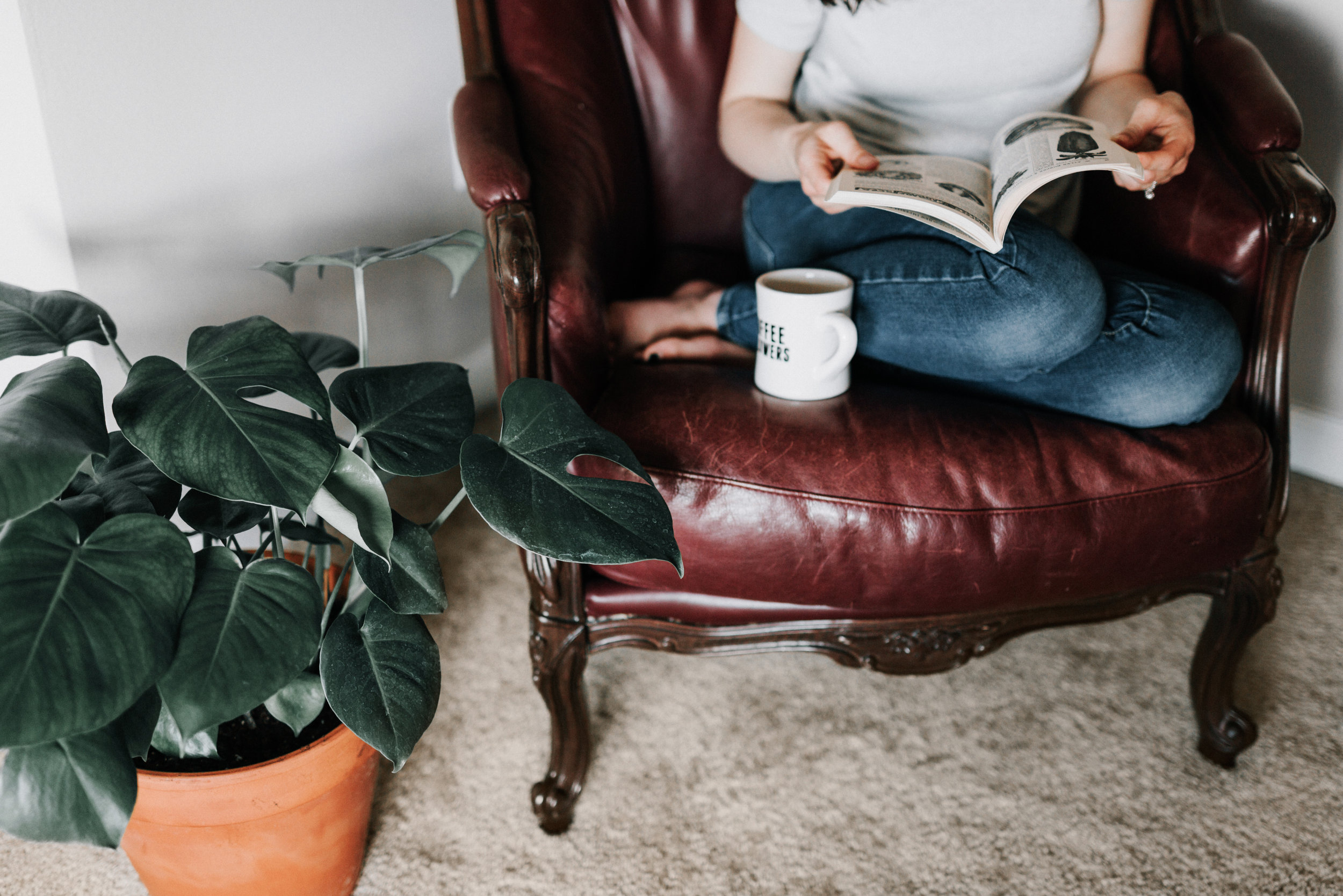Step 3. Enjoy thriving houseplants - (Curate a peaceful and homey space you can enjoy for a life-time.)