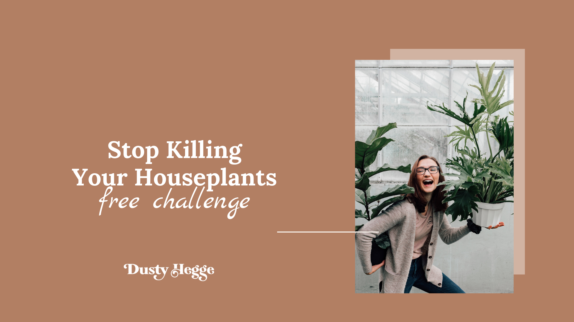 Stop killing your houseplants - a FREE 4-day challenge to understanding your houseplants and creating a routine that works for BOTH of you.png
