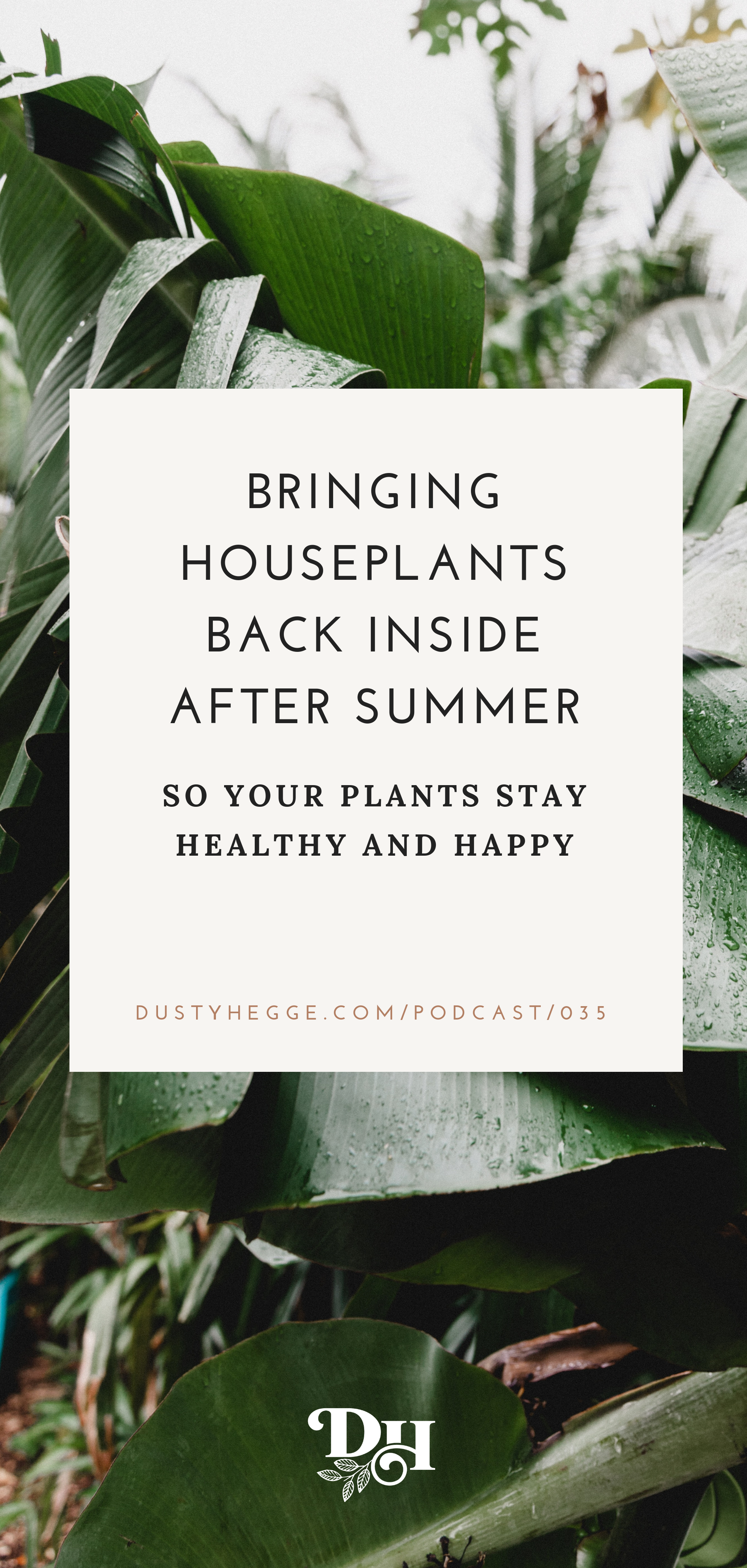 HOw to bring your houseplants back indoors after summer on Grow Well Podcast.png