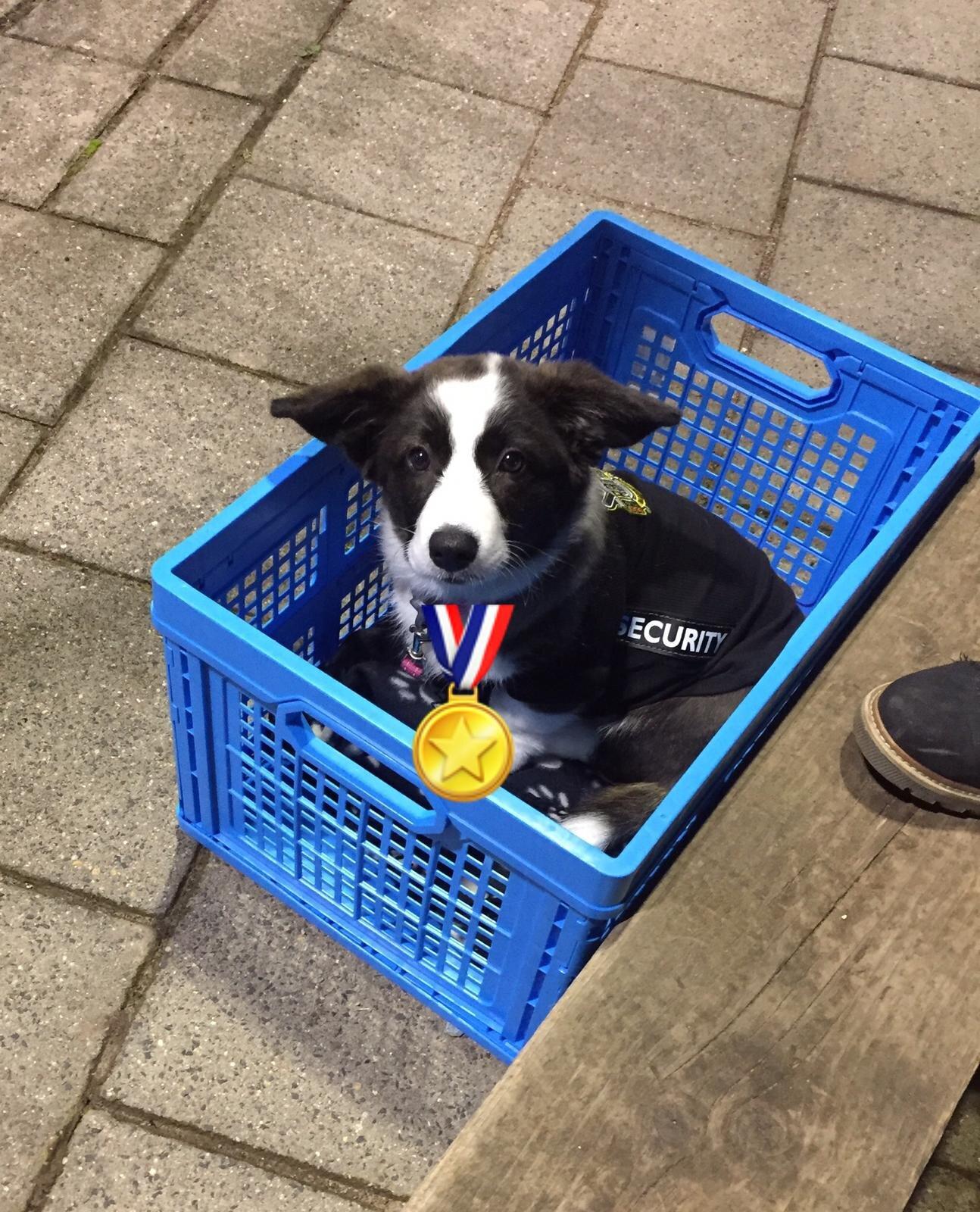 De mascotte kreeg ook een medaille