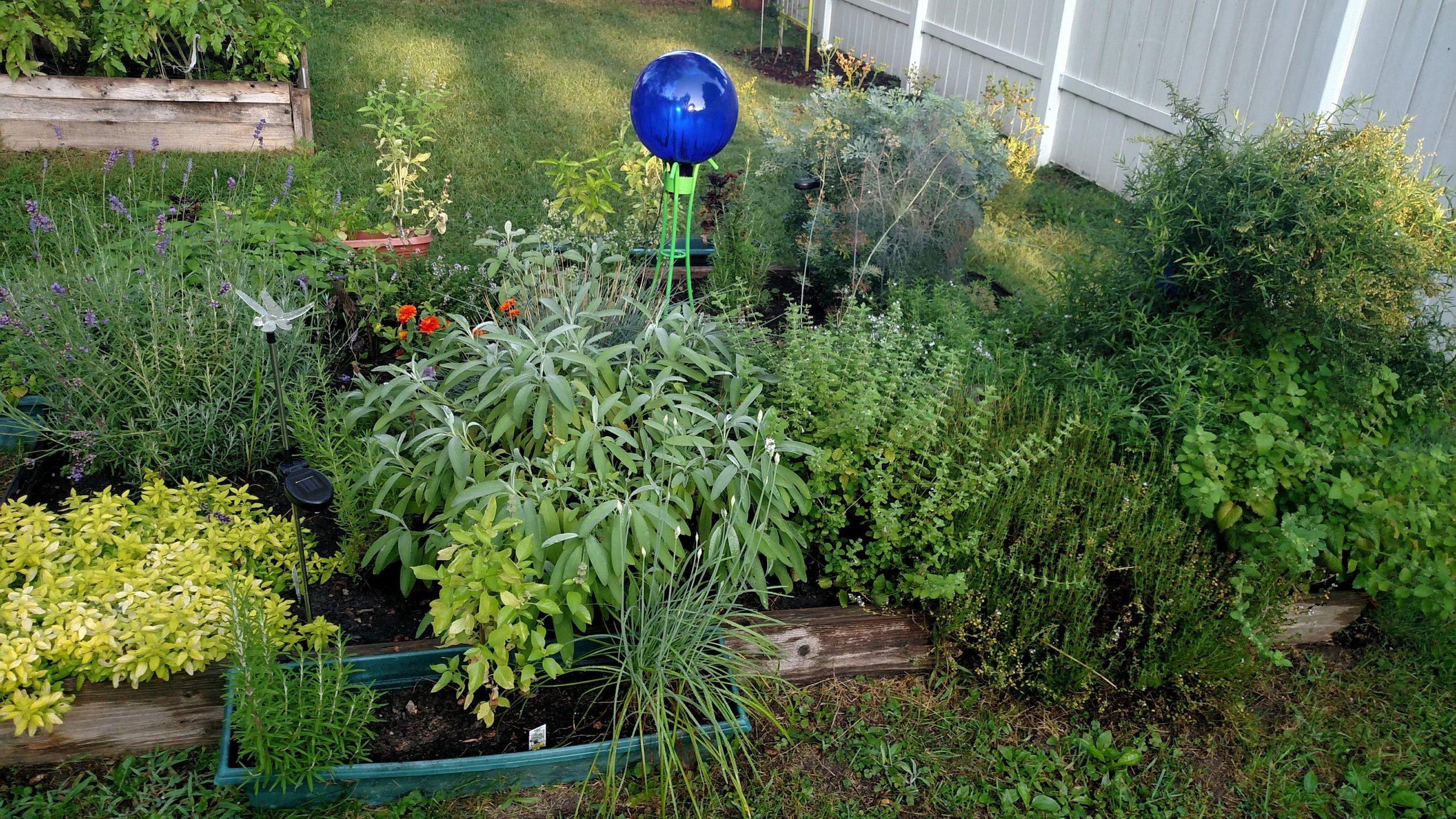 Raleigh herb garden 2017.jpg