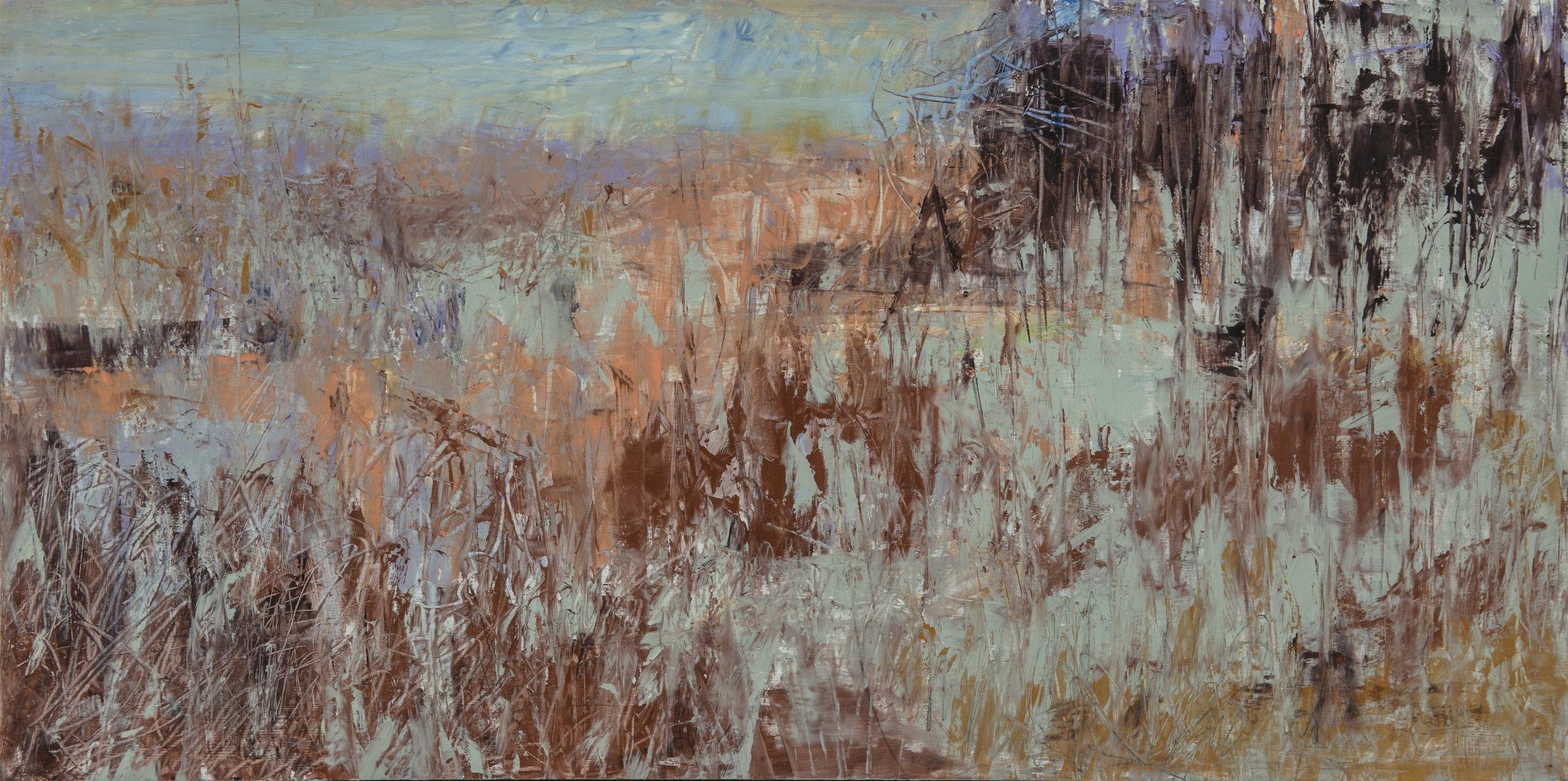 Wetlands 12X24