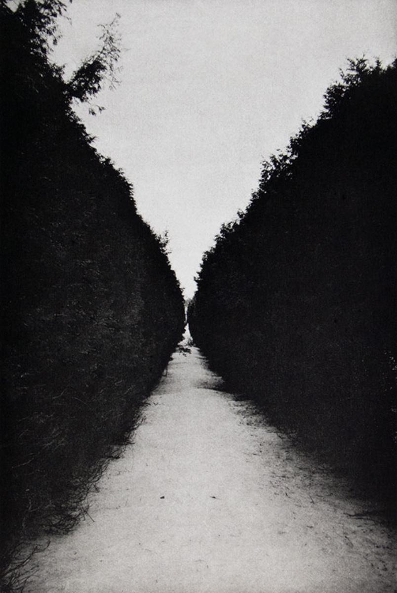"""Philip Van Keuren, ALEE II, 2016, photogravure, 18"""" x 14"""" ed: 12"""