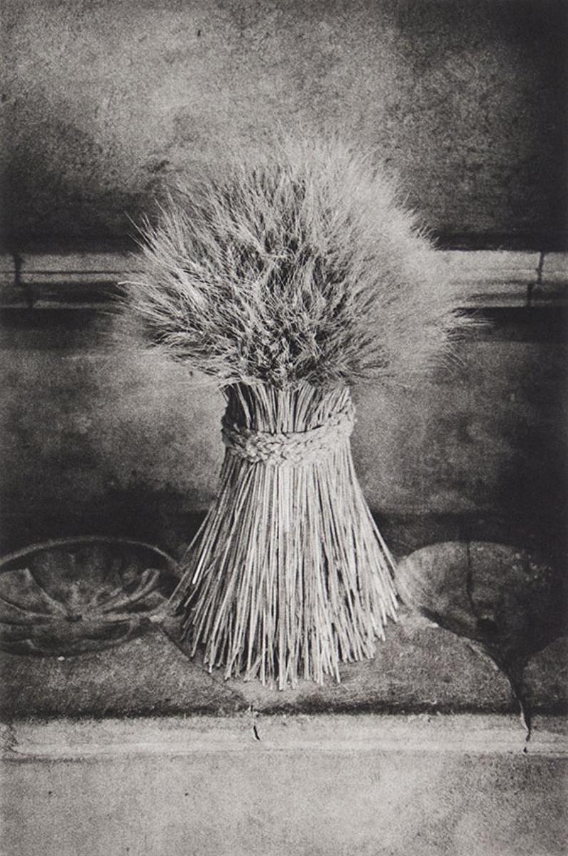 "Philip Van Keuren, SHEAF, 2016, photogravure, 18"" x 14"" ed: 12"