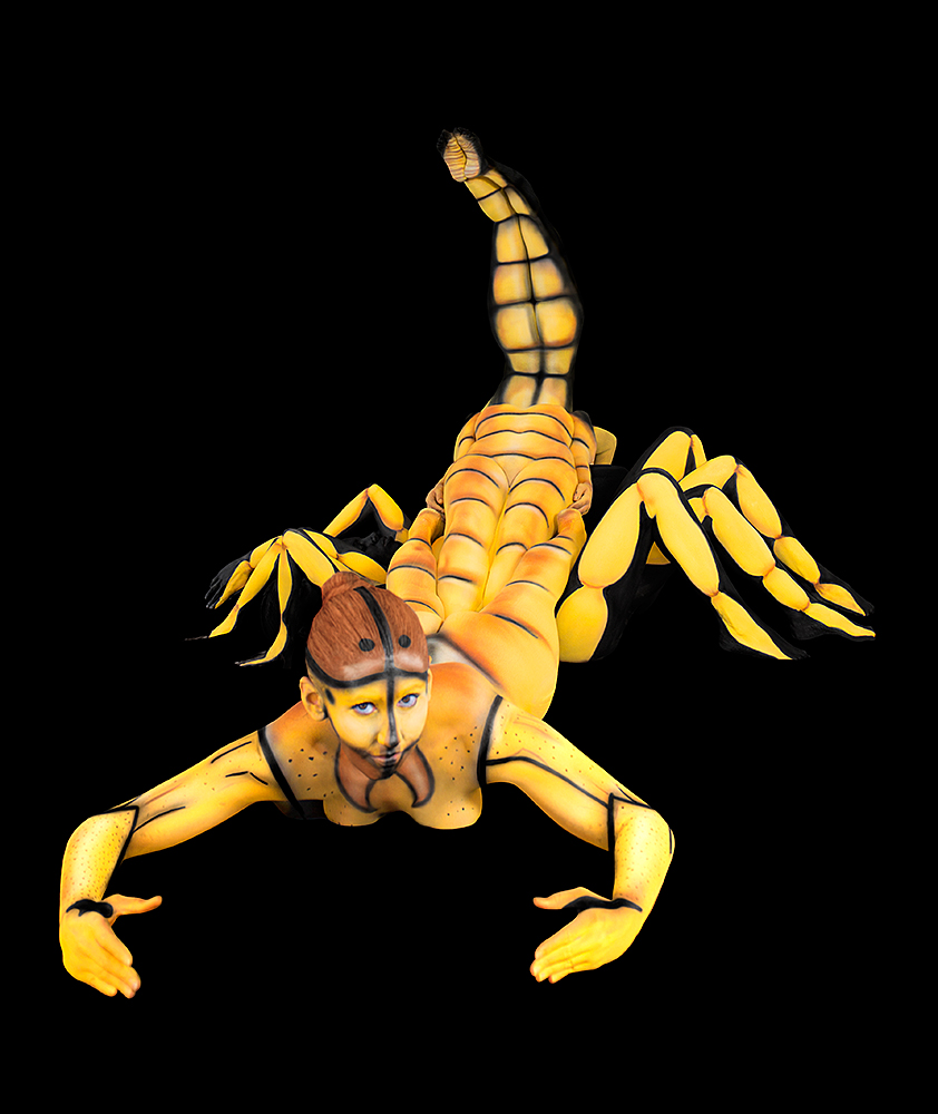 Scorpio Web.jpg