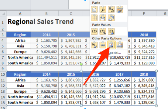 paste a table as a picture excel
