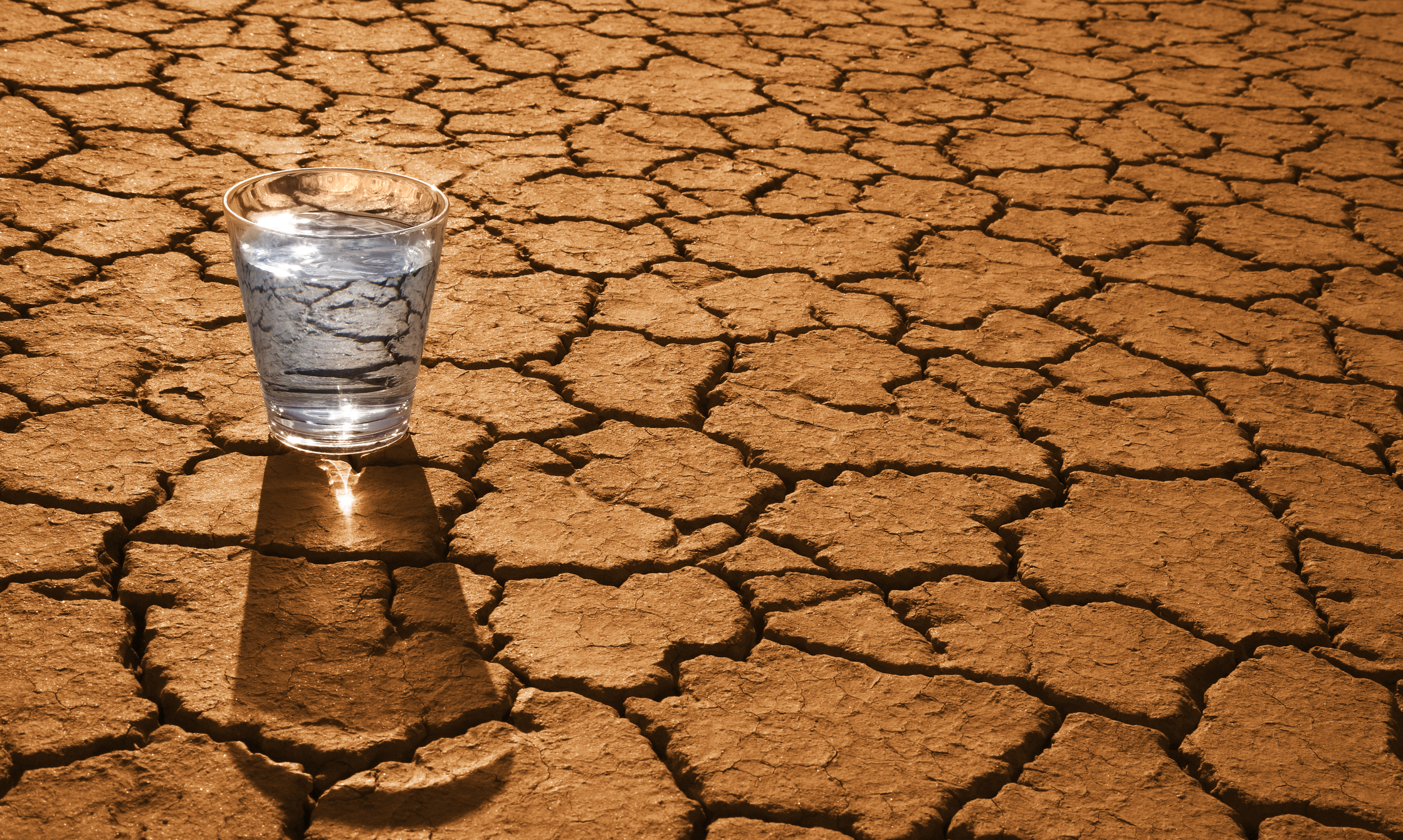 cracked desert and water.jpeg
