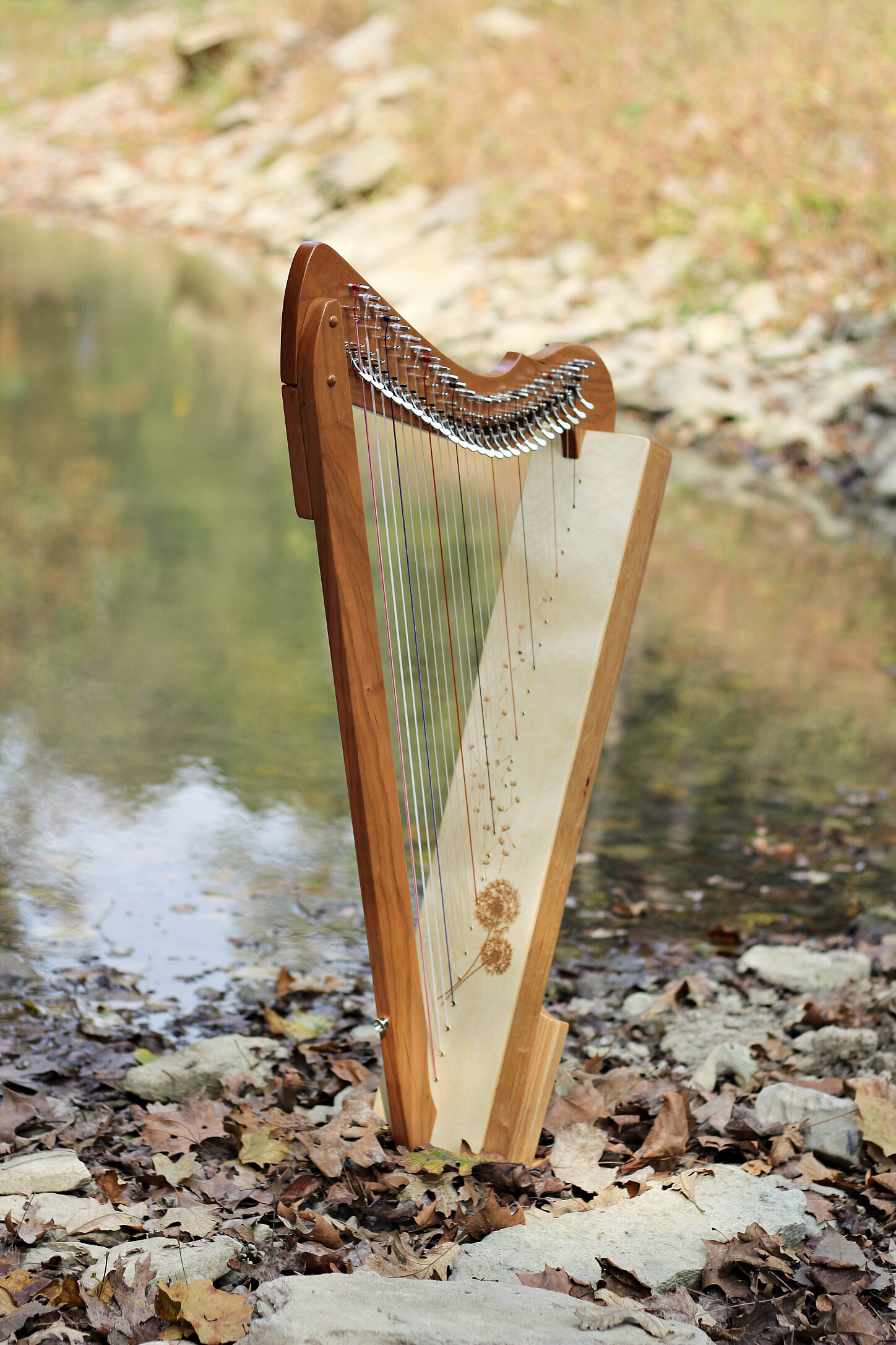 Dandelion ornamentation on a cherry Special Edition Fullsicle™ harp.