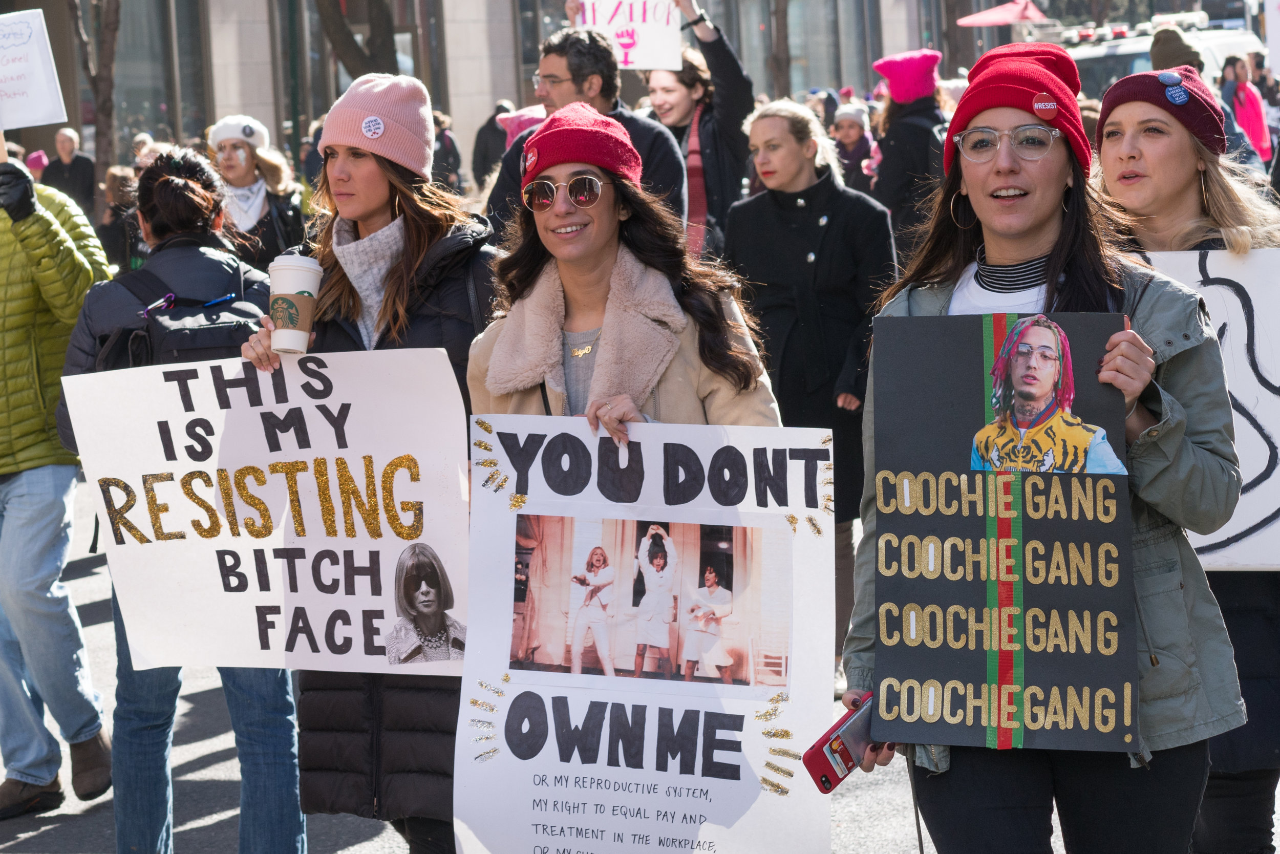 """""""You Don't Own Me"""" from The Women's March, 2018, by Jasper Wright"""