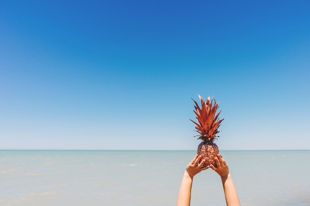 pineapple-supply-co-120785.png