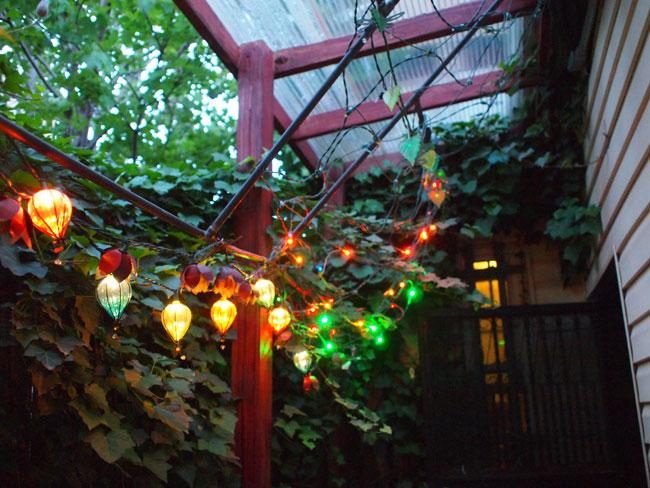 garden_7.jpg