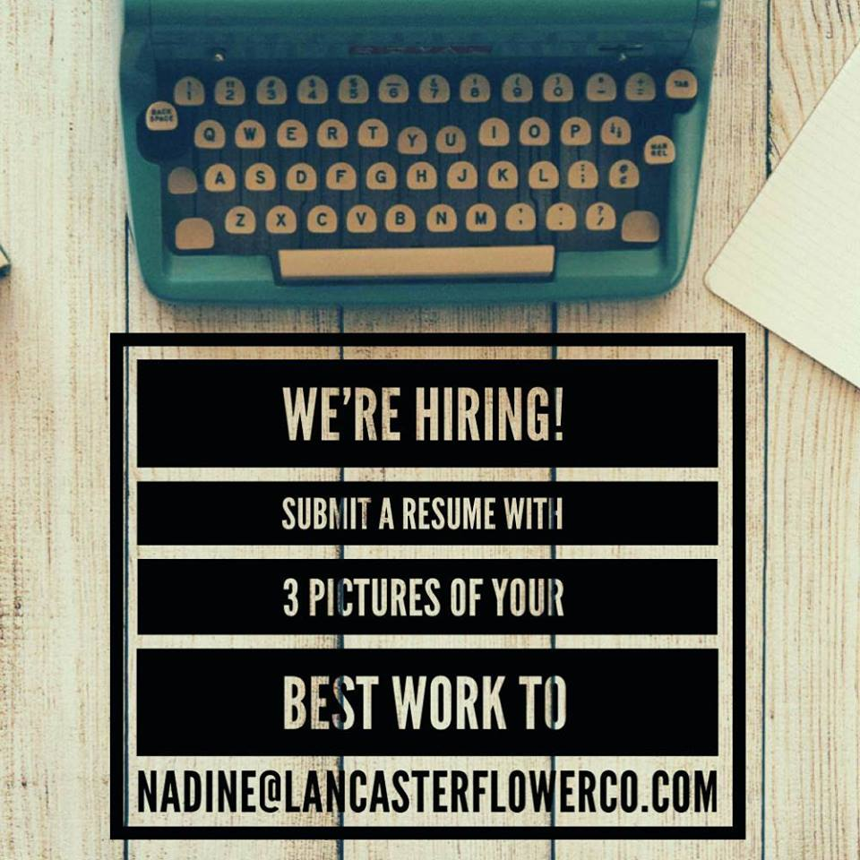 We Are Growing - We are hiring for an assistant arranger!Reliable, creative, moldable. Able to lift up to 40lbs, reliable driver/car. Professional and eager to learn. Friday, Saturday, Sunday availabilities—when the need arises.Submit your resume along with 3 pictures of your best work (from 3 separate events!) to Nadine@lancasterflowerco.com