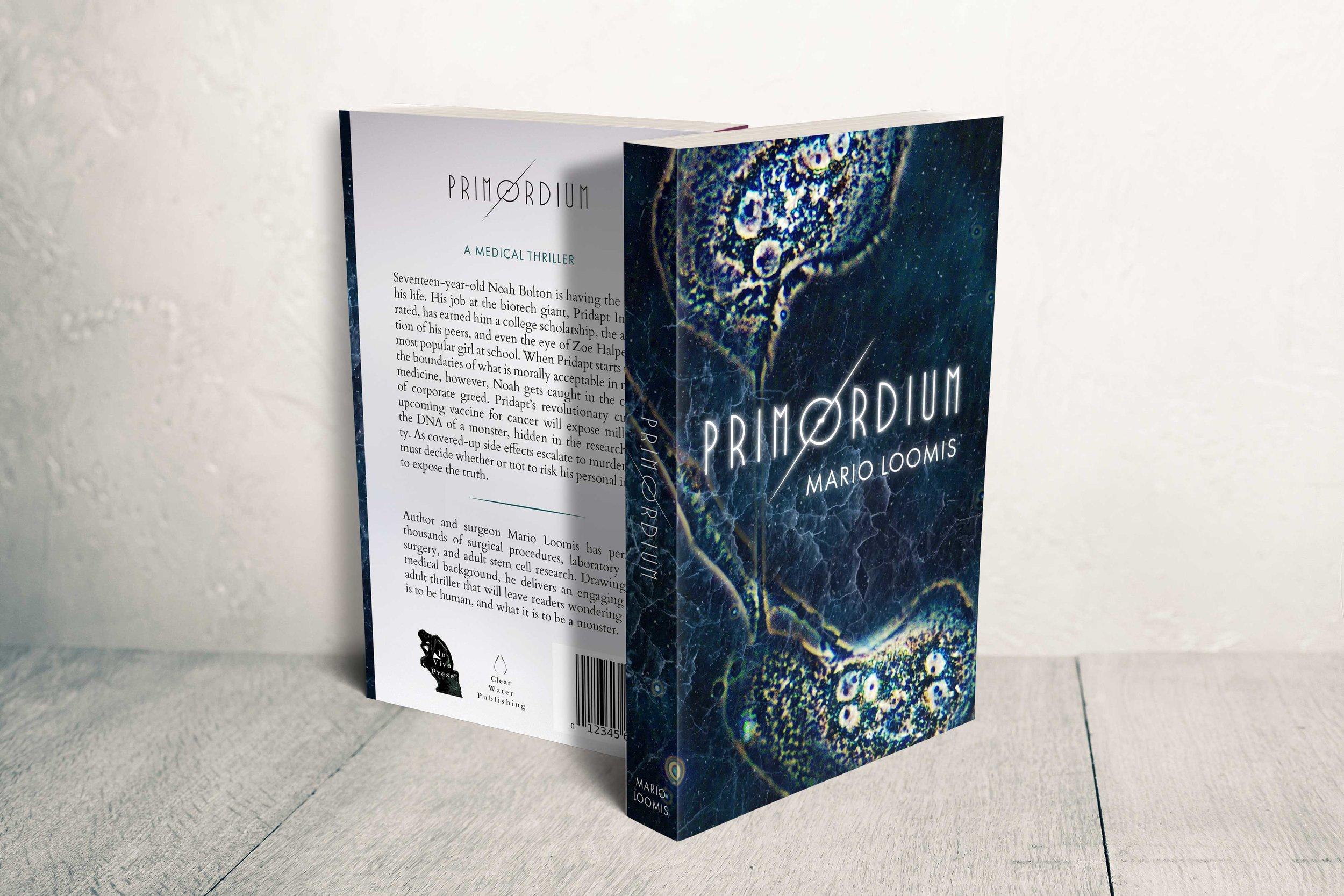 Primordium