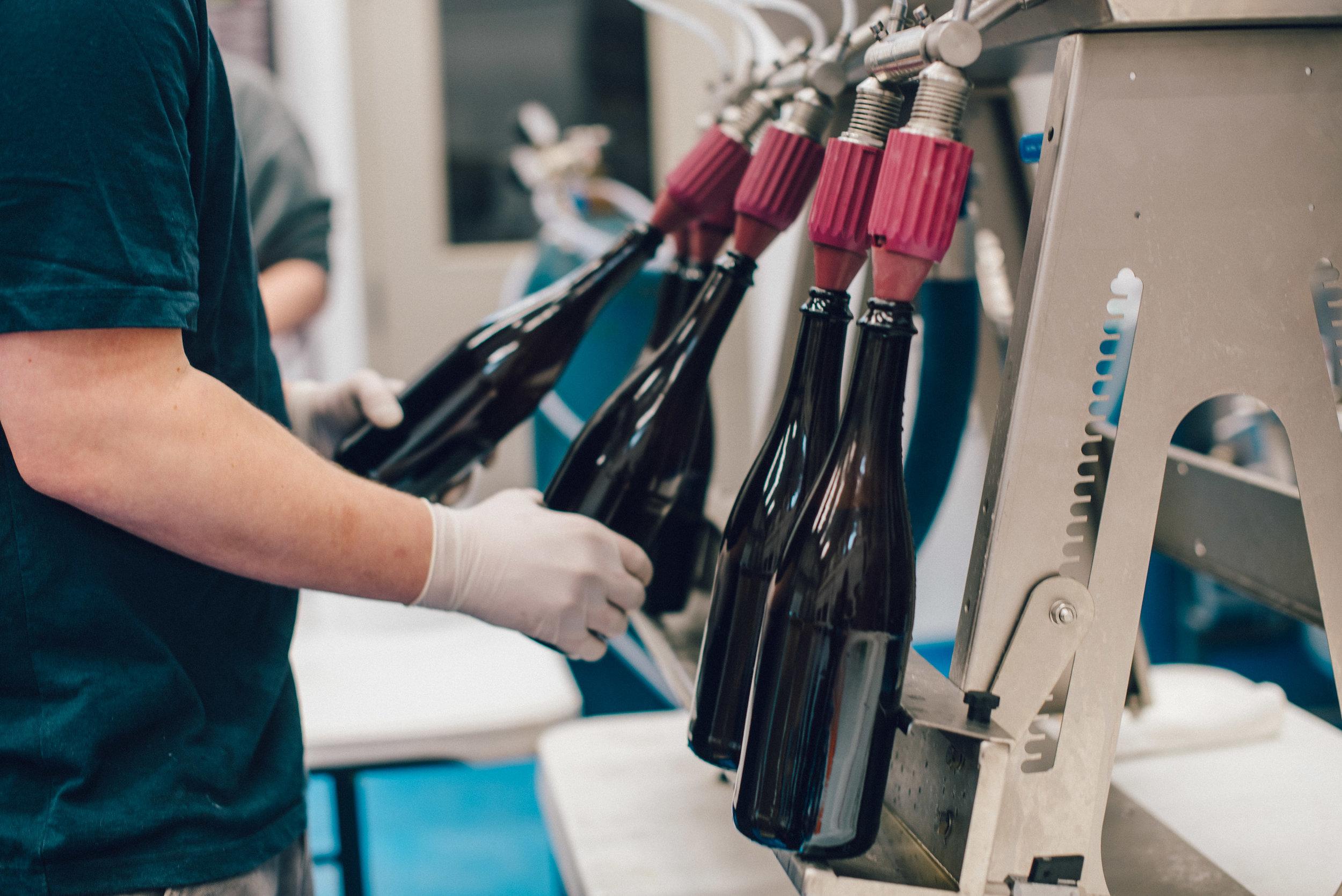 Hacienda-Beer-Co-Bottling-Le-Printemps-2.jpg