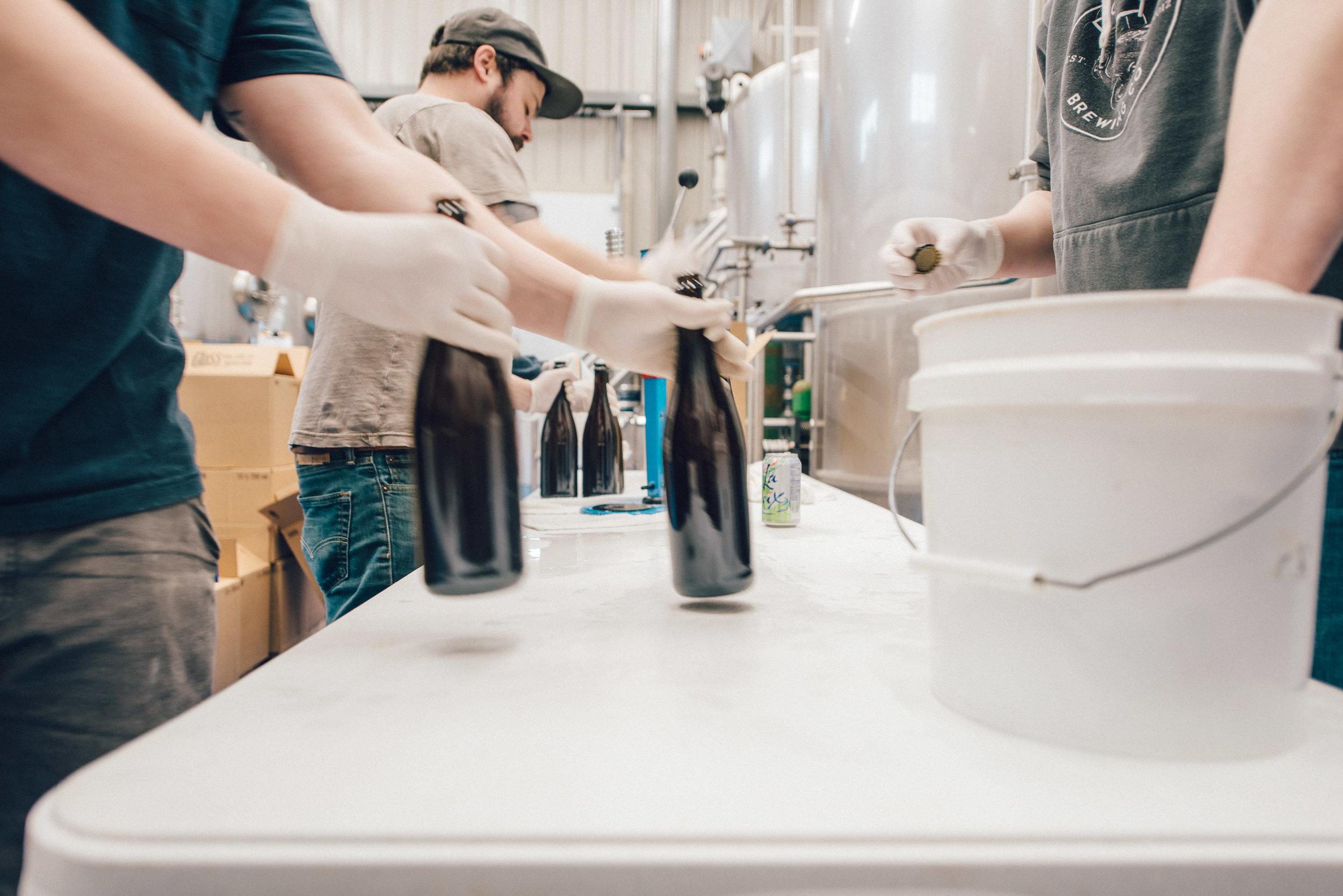 Hacienda-Beer-Co-Bottling-Le-Printemps-6.jpg
