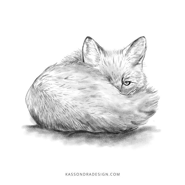 I sketched this a while ago and forgot to post, as work has been crazy lately, but I'm so thankful to have alot of work to get done! .  #sketch #foxsketch #foxdrawing #cutefox #foxes #fox #graphicdesigner #freelancedesigner #entrepreneurgraphicdesigner #entrepreneurdesigner #freelancegraphicdesigner #catholiccreatives #designer #smallbusinessdesigner #smallbusinessowner