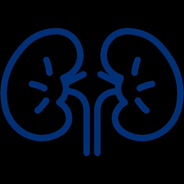 Kidney Resources -