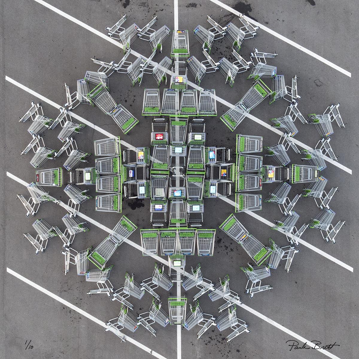 Chrome/Green Shopping Cart Mandala (Publix, 2016)