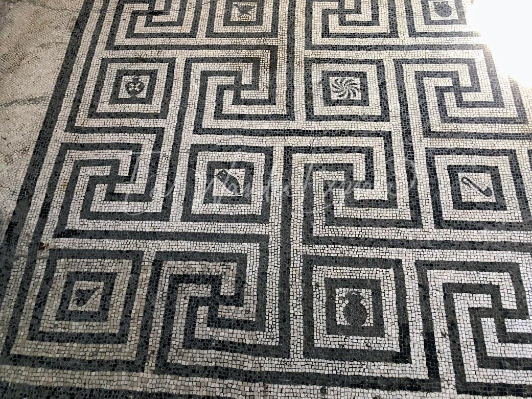 herculaneum womens bath mosaic floor.jpg
