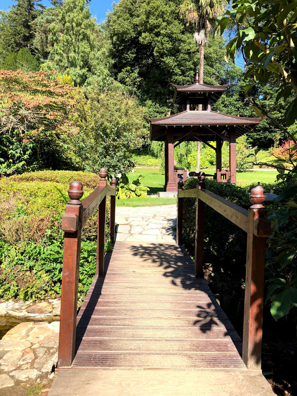 powerscourt garden japanese.jpg