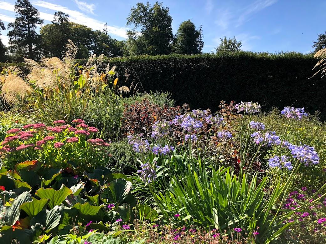 powerscourt garden hedges herbs walled.jpg