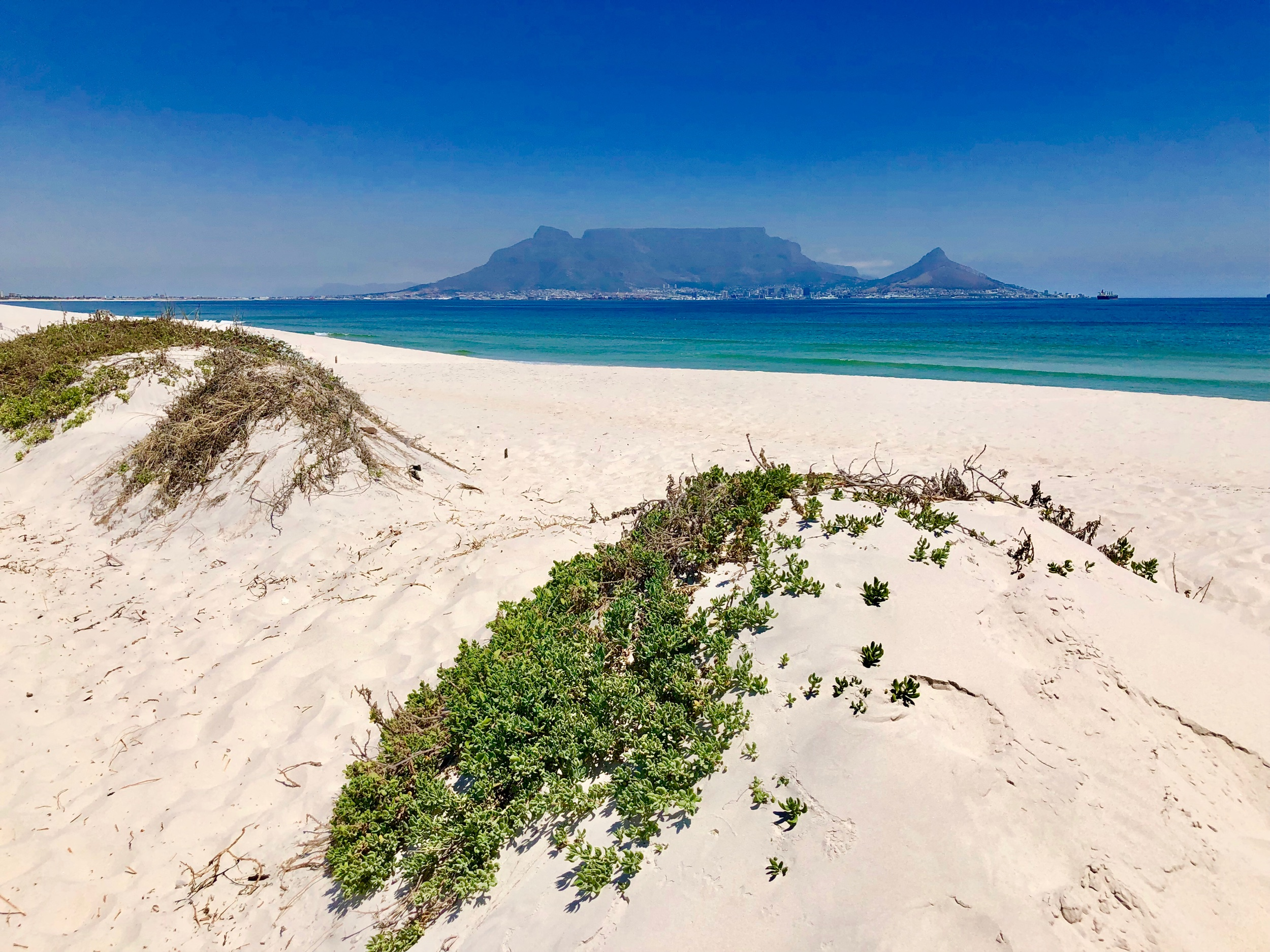 Sandy Dolphin Beach with Table Mountain View