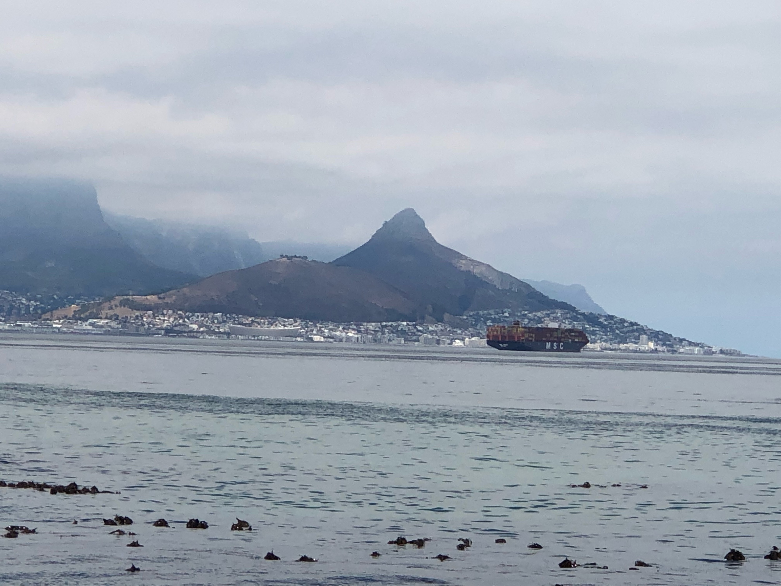 Across the bay from Signal Hill and Lion's Head