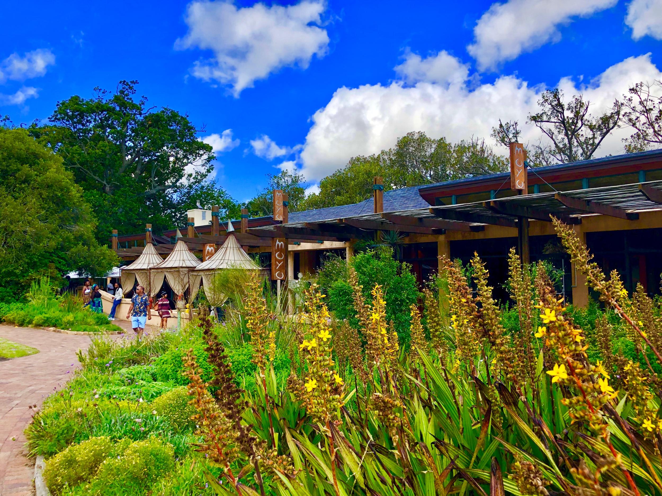 Moyo Restaurant in Kirstenbosch Botanical Gardens