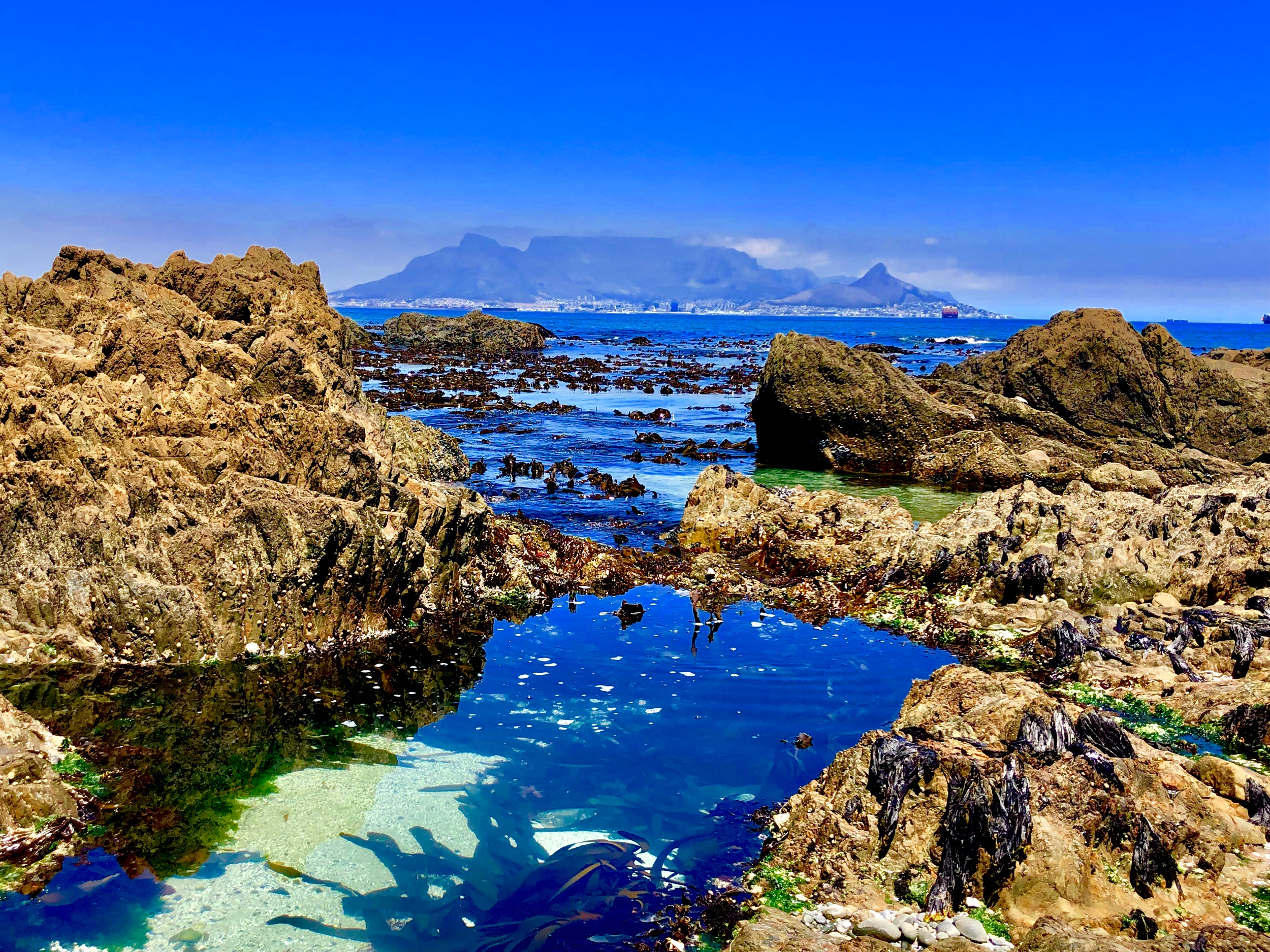 Tide pools at Dolphin Beach, Cape Town