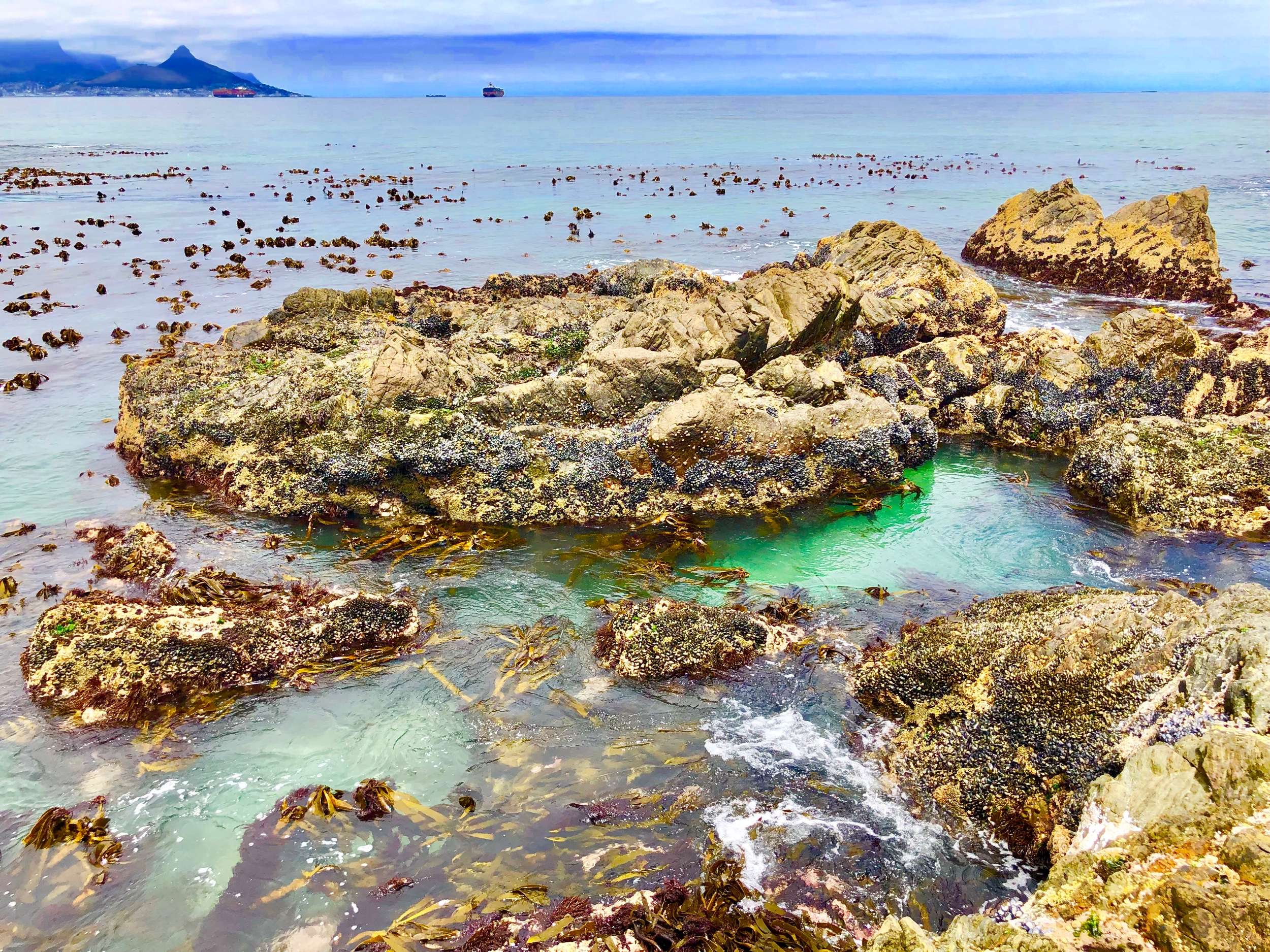 low tide at Dolphin Beach, Cape Town
