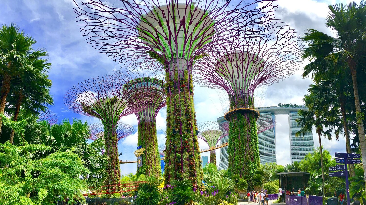 gardens-by-the-bay-supertrees-singapore.jpg