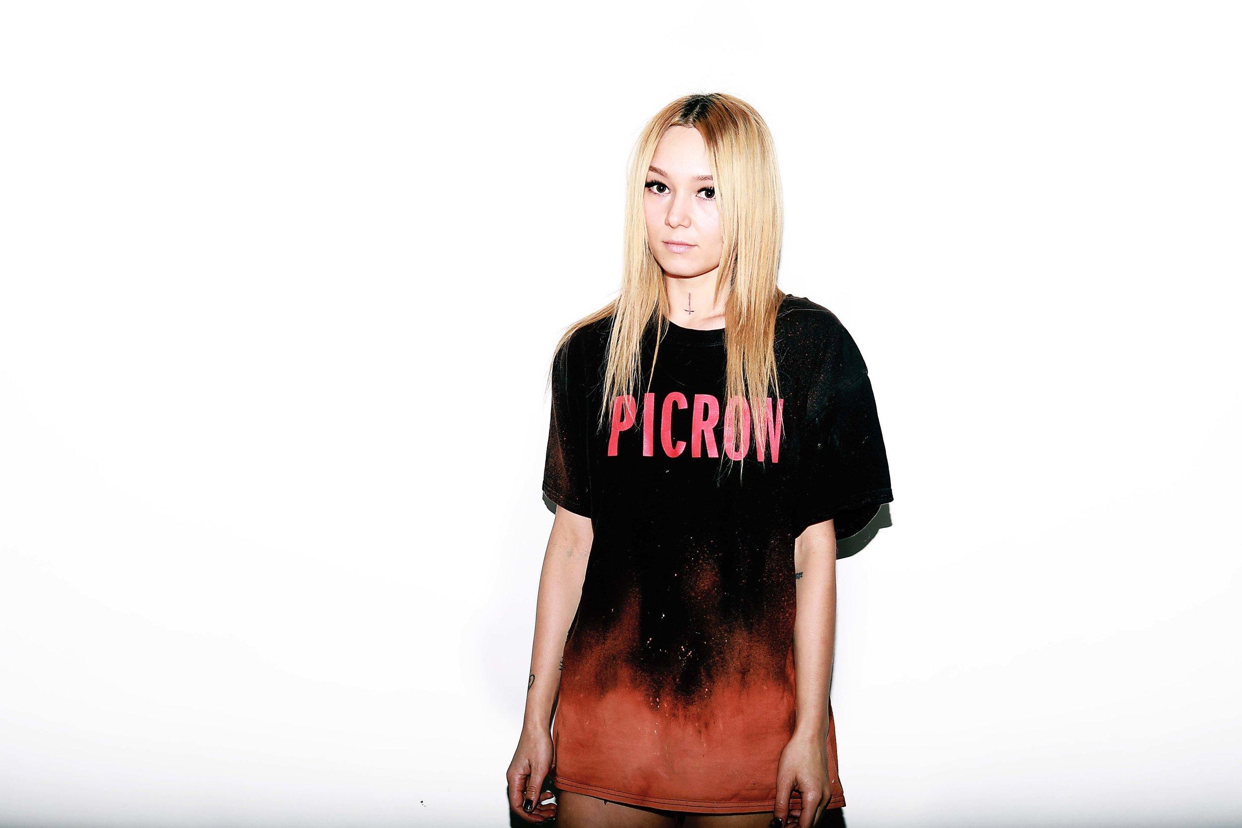 picrow.jpg