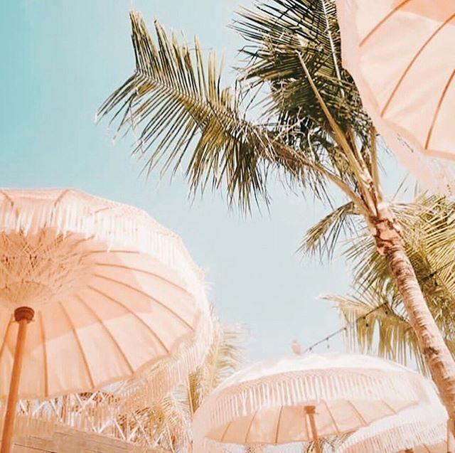 Missing work days under umbrellas & palm trees. 🌴 Can we go back now? 🌞 📸: @thelawncanggu #GGCreativeStudio #NomadLife • • • • • #digitalmarketing #socialmedia #socialmediamarketing #socialmediaagency #socialmediamanagement #socialmediamarketing #digitalmedia #creativestudio #digitalagency #digitalcollective #collective #vancitybusiness #vancitybusinessbabes #viccitybusiness #viccitybusinessbabes #branding #graphicdesign #webdevelopment #appdevelopment #boutiquebusinesses #creativedesign #brandingagency #influencermarketing #digitalstudio #elevateyourbrand
