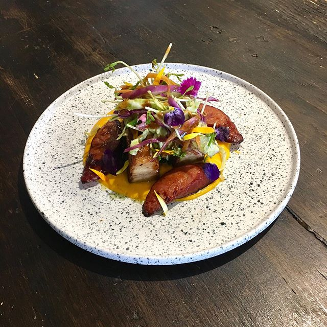 New special ✨ ⠀⠀⠀⠀⠀⠀⠀⠀⠀ ⠀⠀⠀⠀⠀⠀⠀⠀⠀ ⠀⠀⠀⠀⠀⠀⠀⠀⠀ Orange and date glazed pork belly, with spiced chorizo, slaw, and a ginger and pumpkin purée ⠀⠀⠀⠀⠀⠀⠀⠀⠀ ⠀⠀⠀⠀⠀⠀⠀⠀⠀ 🐖🥩 ⠀⠀⠀⠀⠀⠀⠀⠀⠀ ⠀⠀⠀⠀⠀⠀⠀⠀⠀ Serving up now @greenwoodscafe