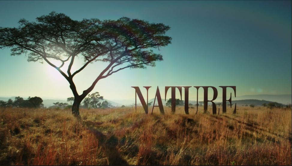 'The Sagebrush Sea' (Nature/PBS)