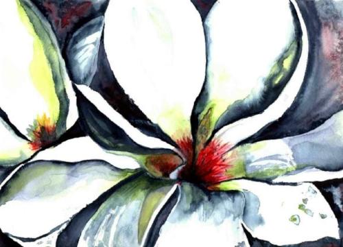 """""""Wild Magnolia"""""""
