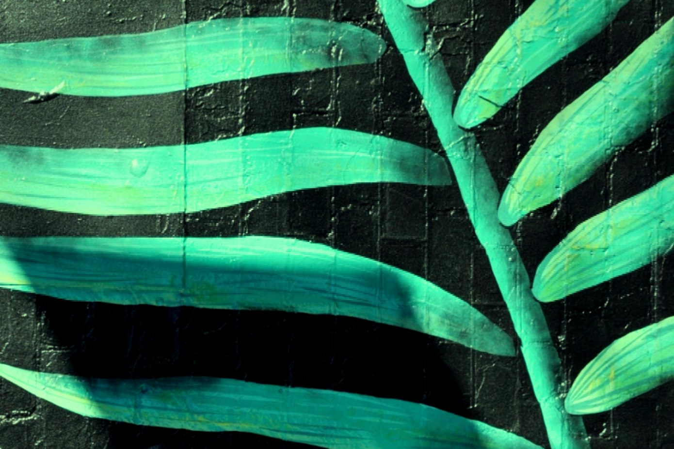 Reusable Nation - Black Friday going green.jpg