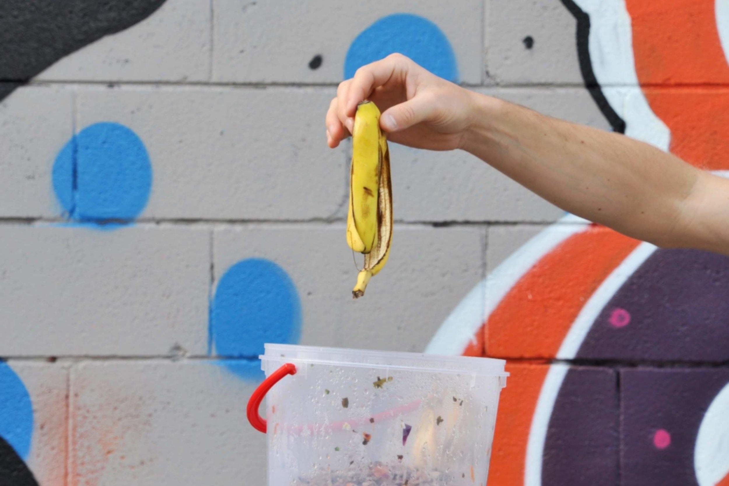 WEEK FOUR CHALLENGE: Start composting your food scraps