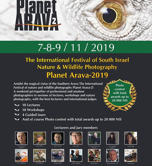 Excited to be part of the #planetarava team on November 7-9 in the desert 🌵 in Israel leading two workshops about shooting Fashion in the Desert. This conference is a great opportunity to learn more about outdoor shooting in the most gorgeous setting and its open to both amateur and professional photographers. Click the link in my bio to find out more and to register 😉 #desertshooting #planetarava #workshop #photographyworkshops #outdoorshoots