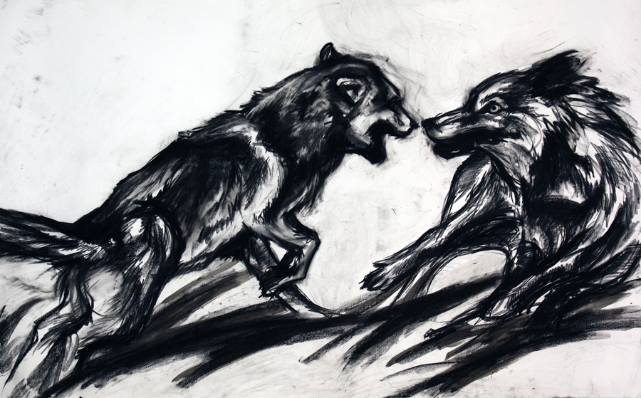 "Chaos and conflict: Wolves. Charcoal, ink wash. 44"" x 54"""