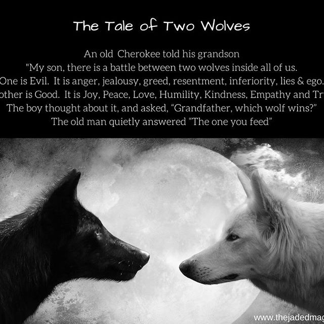 Which wolf do you feed? #doyourpart #abetterworld #bekind #behumble #workhard