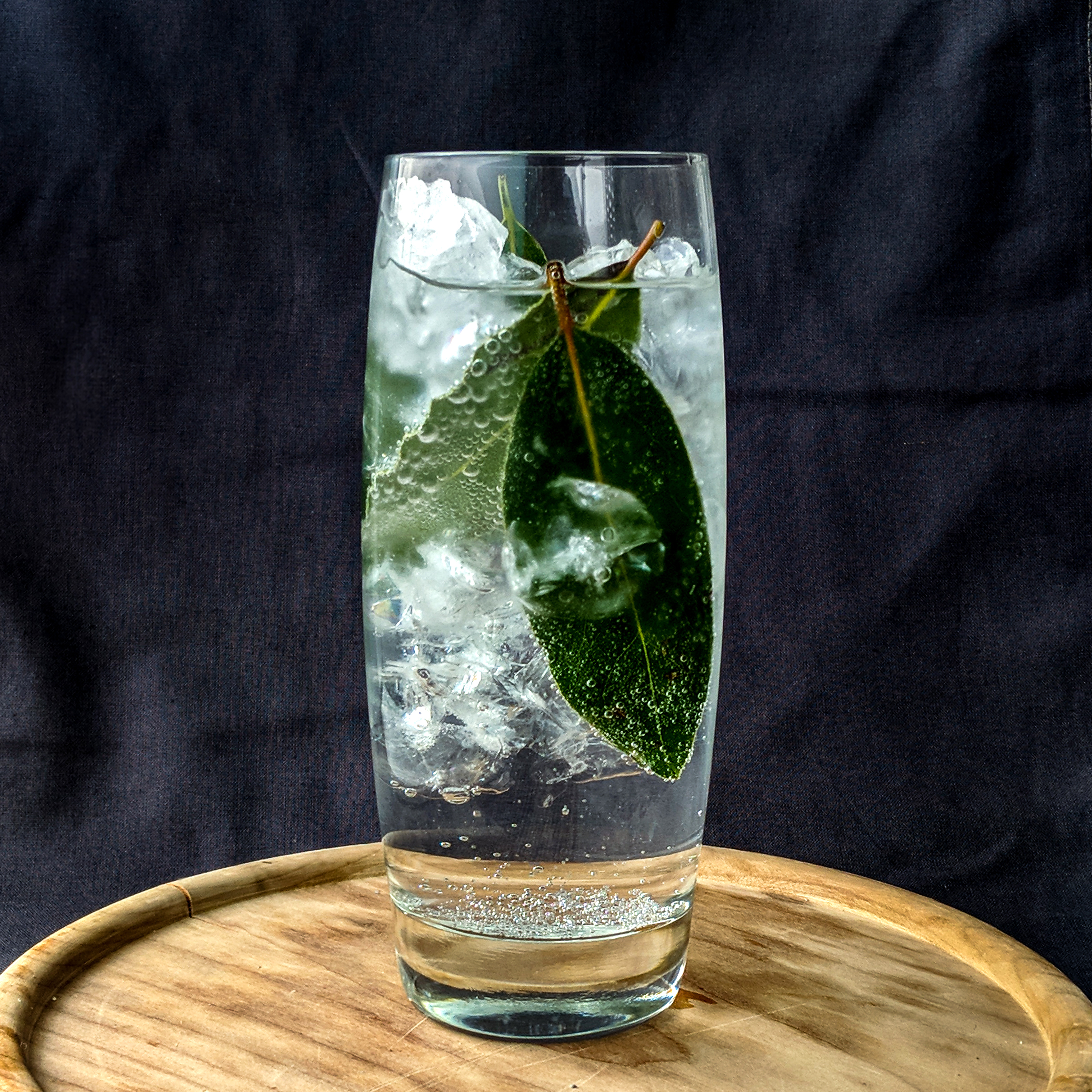 Aluna Cocktail 2.jpg